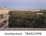 Views Of The Palm Grove Of...