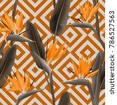 bird of paradise tropical...   Shutterstock .eps vector #786527563
