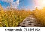 boardwalk to the high fens moor ... | Shutterstock . vector #786595600