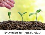 hand watering sprout growing...   Shutterstock . vector #786607030