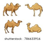 camels in cartoon style  ... | Shutterstock .eps vector #786633916
