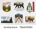 coniferous forest  mountains... | Shutterstock .eps vector #786635083