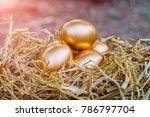 Golden Eggs On Rice Straw.