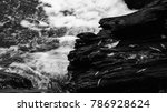 stump tree water splash black... | Shutterstock . vector #786928624
