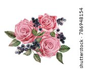 watercolor illustration of... | Shutterstock . vector #786948154