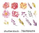 watercolor flowers set. | Shutterstock . vector #786984694