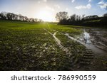 Waterlogged fields in farming countryside after heavy rain in Combe Valley, East Sussex, England. Water run-off is gradual but crops are little affected as yet. Pools and flooding channels developing.
