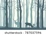 Vector Forest Landscape With...