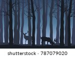 Vector Night Forest Landscape...