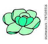 peony vector illustration.... | Shutterstock .eps vector #787105516