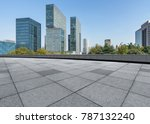 panoramic skyline and buildings ... | Shutterstock . vector #787132240