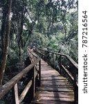lekki conservation centre   Shutterstock . vector #787216564