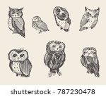 set of vector hand drawn... | Shutterstock .eps vector #787230478