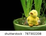 a yellow toy easter duck with...   Shutterstock . vector #787302208