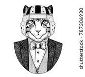 image of domestic cat elegant... | Shutterstock . vector #787306930
