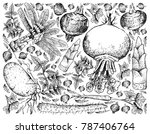 root and tuberous vegetables ... | Shutterstock .eps vector #787406764