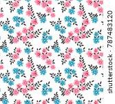 seamless raster ornamental... | Shutterstock . vector #787483120