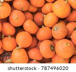 orange japanese pumpkins. | Shutterstock . vector #787496020