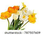 the bouquet of beautiful spring ... | Shutterstock . vector #787507609