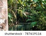 beautiful lake and nature...   Shutterstock . vector #787619116