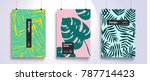 poster with tropical flat... | Shutterstock .eps vector #787714423