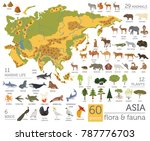 flat asian flora and fauna map... | Shutterstock .eps vector #787776703