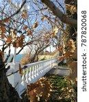 sea landscape with oak tree... | Shutterstock . vector #787820068
