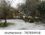 Landscape Snow Scene In Englis...