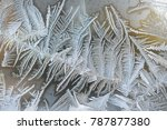 frosted window series   Shutterstock . vector #787877380
