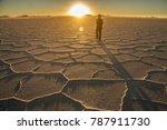 salar de uyuni  bolivia   Shutterstock . vector #787911730