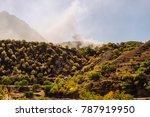 inspiring summer nature  lots... | Shutterstock . vector #787919950