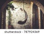An Hammock Hanging Inside A...