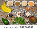 food is source of magnesium  mg ... | Shutterstock . vector #787944139