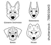 dogs breeds icon set in... | Shutterstock .eps vector #788010643