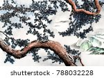 chinese traditional... | Shutterstock . vector #788032228