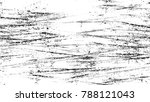 dry brush strokes and scratches ... | Shutterstock .eps vector #788121043