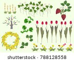 mimosa flowers and spring plant ... | Shutterstock .eps vector #788128558