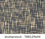 abstract grunge vector... | Shutterstock .eps vector #788129644