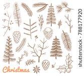 hand drawn fir and pine... | Shutterstock . vector #788177920