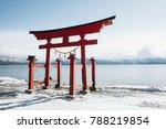 red torii gate of japanese... | Shutterstock . vector #788219854