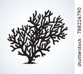 deep old invertebrate anthozoa... | Shutterstock .eps vector #788226790