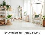 green pillow on a hammock and... | Shutterstock . vector #788254243