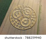 crop circle in a cornfield at... | Shutterstock . vector #788259940