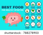 best food for strong intestine... | Shutterstock .eps vector #788278903