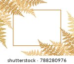 Fern Frond Twigs Frame Vector...