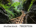 Small photo of Hard way through the canyon in the Tatra Mountains, Slovakia. The abandoned old wooden bridge going to nowhere in deep wild mingled forest. Outdoor extreme leisure. Wild nature. Artistic retouching.