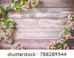spring blooming branches on...   Shutterstock . vector #788289544
