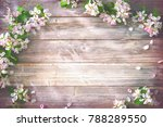 spring blooming branches on... | Shutterstock . vector #788289550