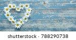 daisy flowers in heart shape on ... | Shutterstock . vector #788290738