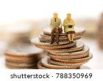 miniature people  old couple... | Shutterstock . vector #788350969
